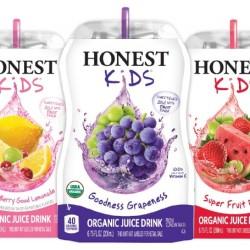 Honest Tea Kids Fruit Pouch