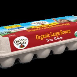 OV eggs