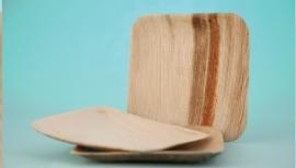mika pak palm leaf plates