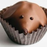 Product Review: Gearharts Fine Chocolates Peanut Butter Pups